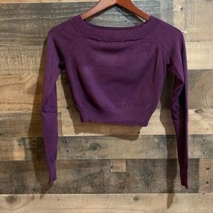 Express Plum Purple Cropped Long Sleeve Sweater